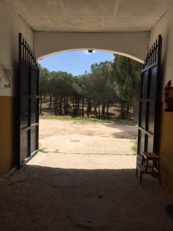 cuadras en Club Hípico Yabusan Venta de la Rubia Madrid